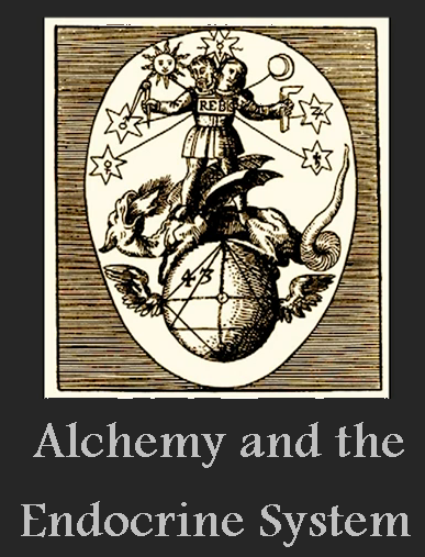 Alchemy and Endocrine System of Body