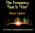 cutting edge counsiousness Bruce Lipton The Frequency That is You Interview