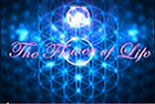 Flower of Life Hologram