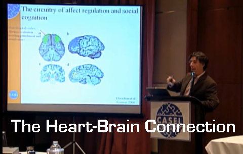 The Heart and Brain Connection