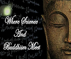 Where Science and Buddhism Meet